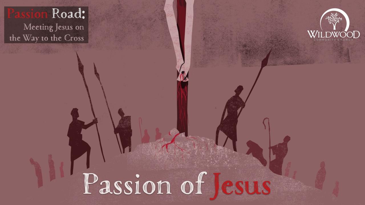 P R passion.001